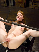 dildo, Sexy shaved red head get the bondage of her life on Hogtied.